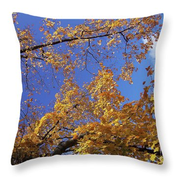 Tennessee Tree 1 Throw Pillow