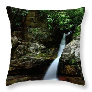 Tennessee's Blue Hole Falls Throw Pillow