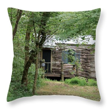 Terapin Station  Throw Pillow