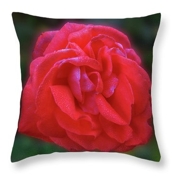 Throw Pillow featuring the photograph Teresa by Mark Blauhoefer