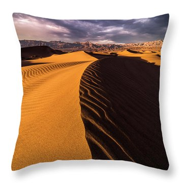 Terminus Awaits Throw Pillow by Bjorn Burton