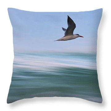 Throw Pillow featuring the photograph Tern Flight Vert by Laura Fasulo