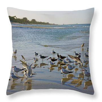 Terns And Seagulls On The Beach In Naples, Fl Throw Pillow