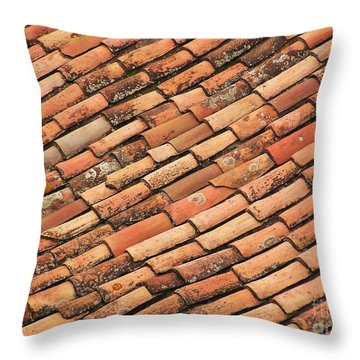 Terra Cotta Tiles Throw Pillow by Michele Penner