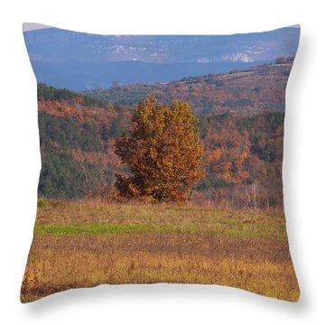 Terra Istria Throw Pillow