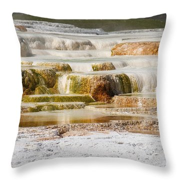 Terrace Colors Throw Pillow by Chad Davis