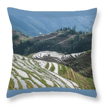 Throw Pillow featuring the photograph Terrace Fields Scenery In Spring by Carl Ning