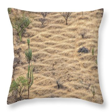 Throw Pillow featuring the photograph Terraced Slope by Britt Runyon