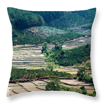 Terraces Throw Pillow