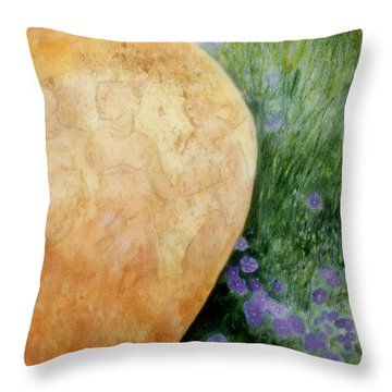 Terracotta Urn Throw Pillow by Jan Amiss
