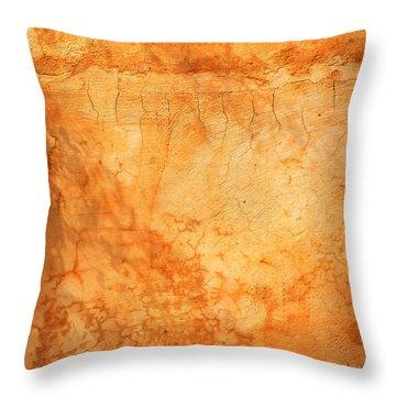 Terracotta Wall Throw Pillow