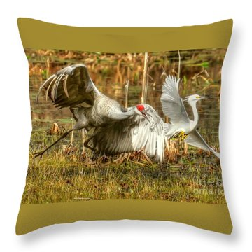 Territorial Dispute Throw Pillow by Myrna Bradshaw