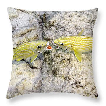 Throw Pillow featuring the photograph Territorial Dispute by Perla Copernik