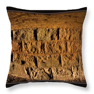 Terry Tunnel Triptych Throw Pillow by Leland D Howard