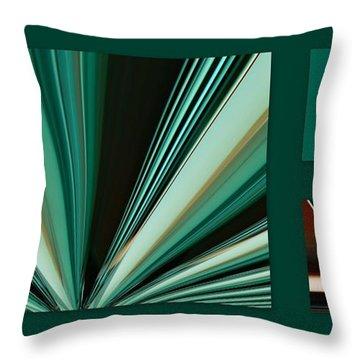 Test Sized Throw Pillow