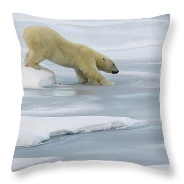 Testing The Ice Throw Pillow