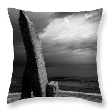 Teter Infrared Throw Pillow