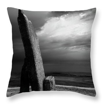 Teter Infrared Throw Pillow