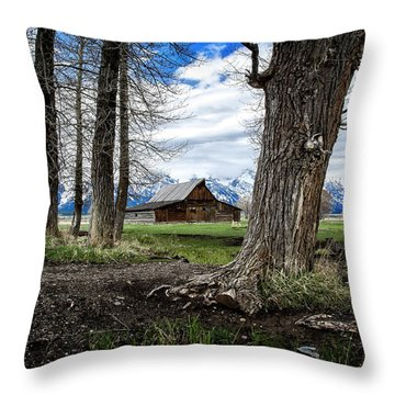 Throw Pillow featuring the photograph View From Mormon Row by Scott Read