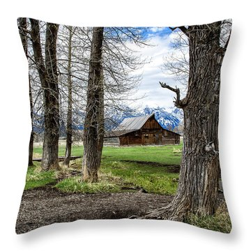 Throw Pillow featuring the photograph Moulton Barn On Mormon Row by Scott Read