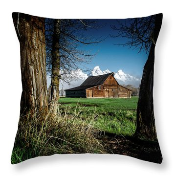 Throw Pillow featuring the photograph Tetons And Moulton Barn by Scott Read