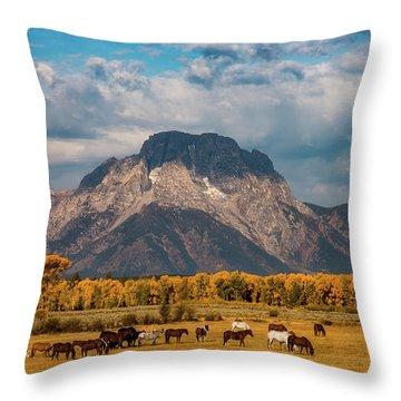 Teton Horse Ranch Throw Pillow