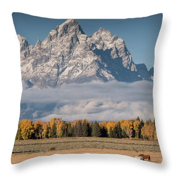 Teton Horses Throw Pillow