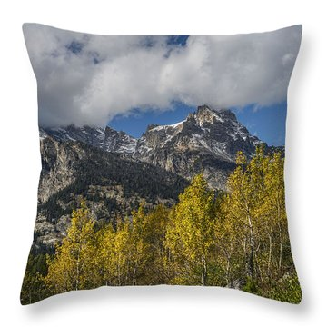 Teton Magic Throw Pillow