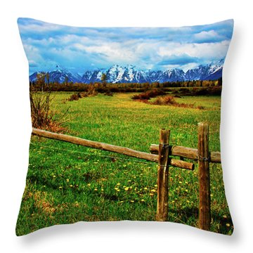 Throw Pillow featuring the photograph Teton Park Spring by Norman Hall