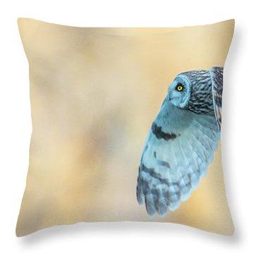 Teton Search  Throw Pillow