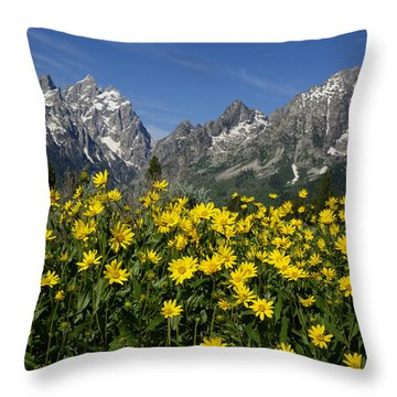 Teton Spring Throw Pillow