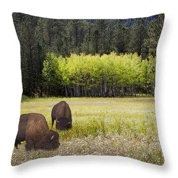 Throw Pillow featuring the photograph Tetonka by John Hix
