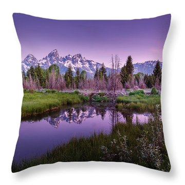 Tetons In Pink Throw Pillow
