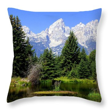 Tetons Throw Pillow by Marty Koch