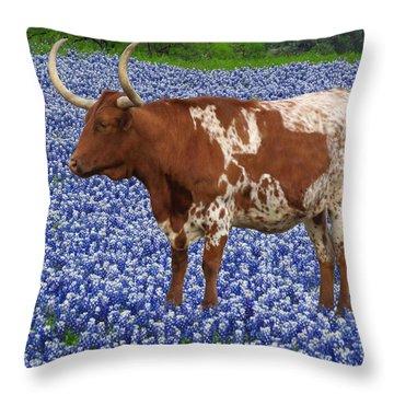 Da227 Tex And The Bluebonnets Daniel Adams Throw Pillow