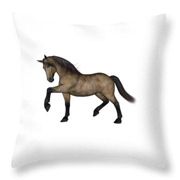 Texas Throw Pillow