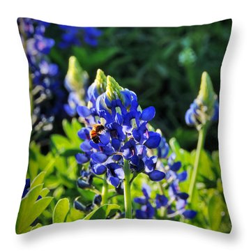 Throw Pillow featuring the photograph Texas Bluebonnets 003 by Lance Vaughn