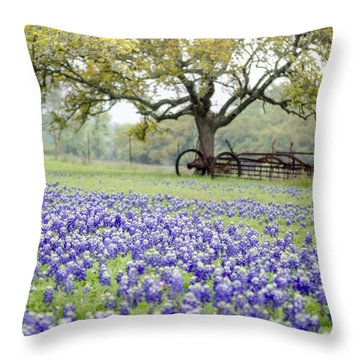 Texas Bluebonnets And Rust Throw Pillow by Debbie Karnes
