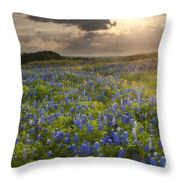 Texas Bluebonnets At Sunrise Throw Pillow