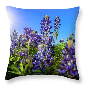 Texas Bluebonnets Backlit II Throw Pillow