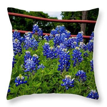 Texas Bluebonnets In Ennis Throw Pillow