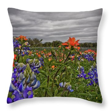 Texas Bluebonnets Throw Pillow by Jill Smith