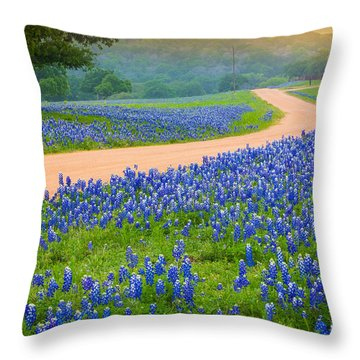 Texas Country Road Throw Pillow