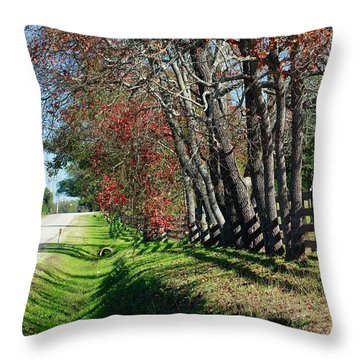 Texas Fall Throw Pillow