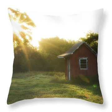 Texas Farm Throw Pillow