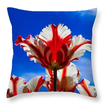 Texas Flame Parrot Tulip Throw Pillow