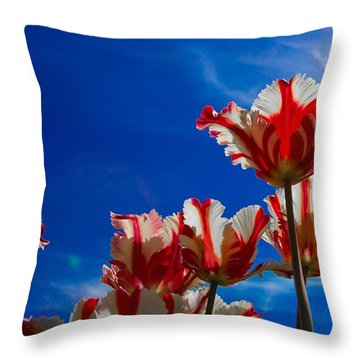 Texas Flames Reaching For The Sun Throw Pillow