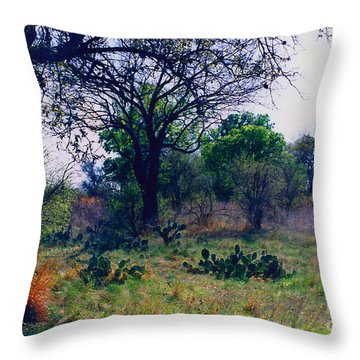 Texas Hill Country Throw Pillow by Fred Jinkins
