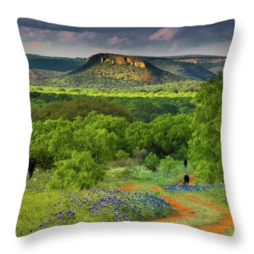 Texas Hill Country Ranch Road Throw Pillow by Darryl Dalton