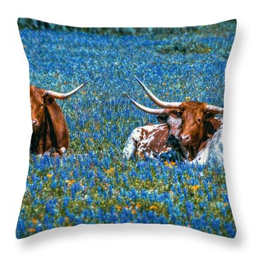Texas In Blue Throw Pillow